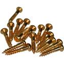 Tuner Screws M-GLD-16pcs