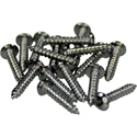 Tuner Screws S-CHR-16pcs