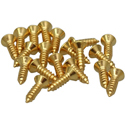 Pickguard Screws LP-GLD