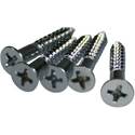 Bridge Screws Chrome