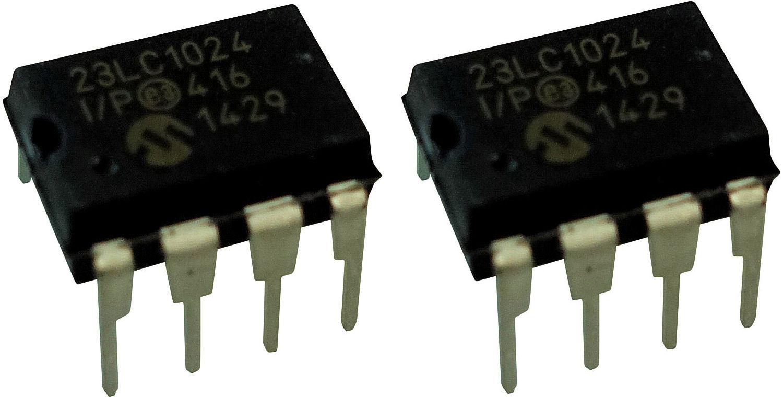 Electric Druid DIGIDELAY SRAM 128kB, 2 pieces