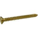 Toronzo Neck Plate Screw TZ-02-Gold