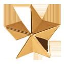 Grover Star Button, gold
